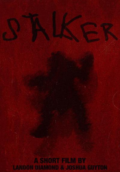 Stalker 2021 1080p WEBRip DD5 1 x264-GalaxyRG