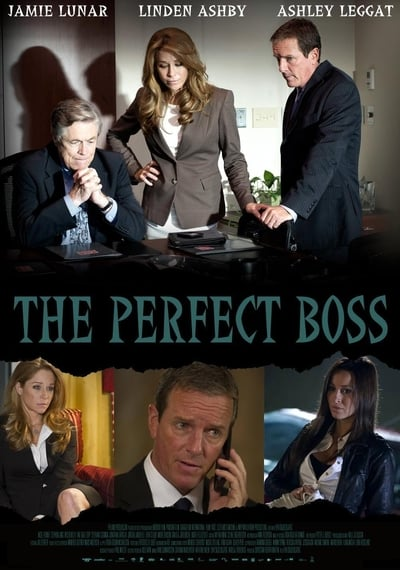 The Perfect Boss 2013 1080p WEBRip x265-RARBG