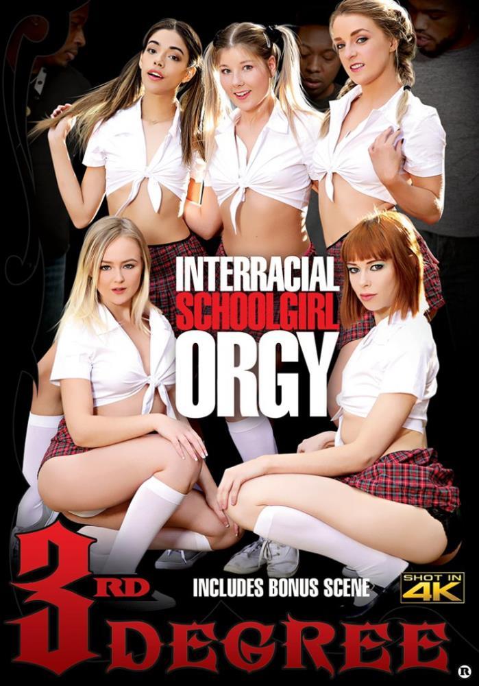 Interracial Schoolgirl Orgy [WEB-DL 480p 1.77 Gb]