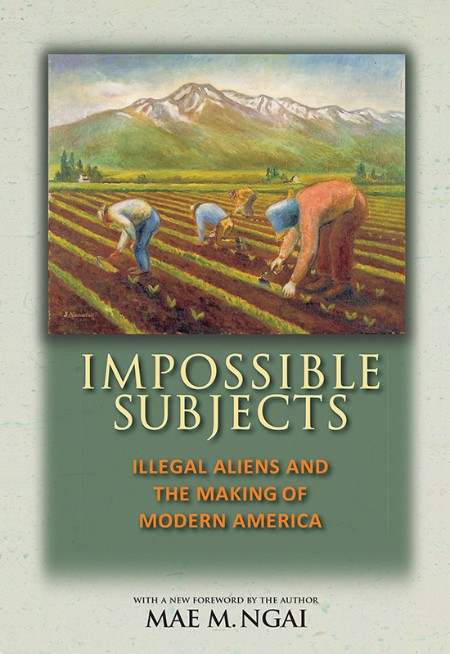Impossible Subjects  Illegal Aliens and the Making of Modern America by Mae M  Ngai