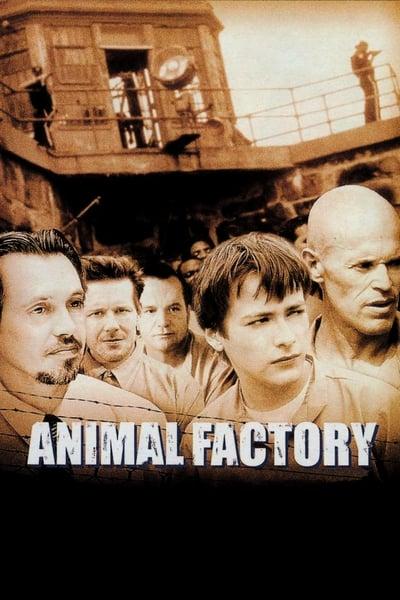 Animal FacTory 2000 1080p BluRay x265-RARBG