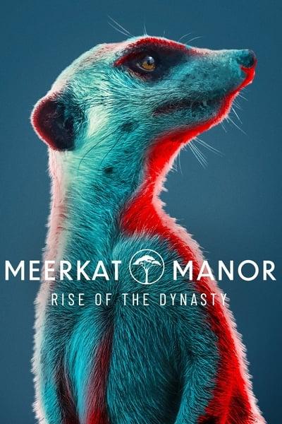 212035274_meerkat-manor-rise-of-the-dynasty-s01e01-720p-hevc-x265-megusta.jpg