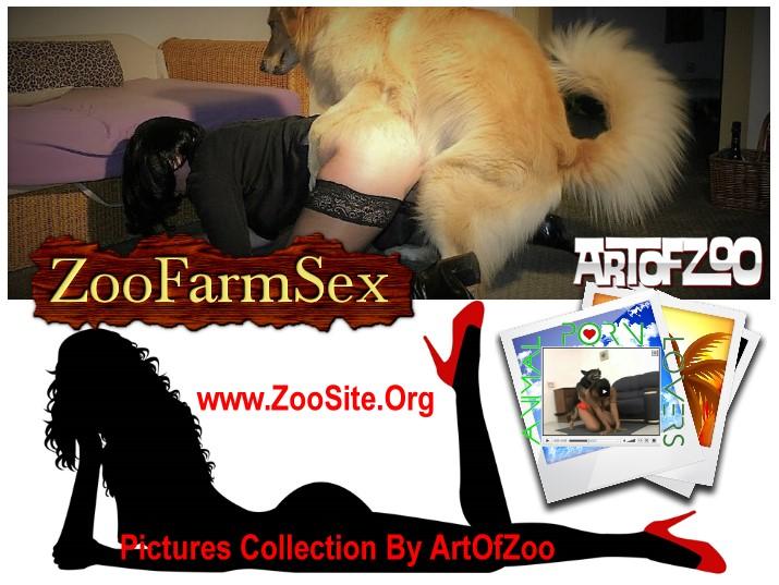 208512445 aoz fotos cover - ArtOfZoo Photos RARE
