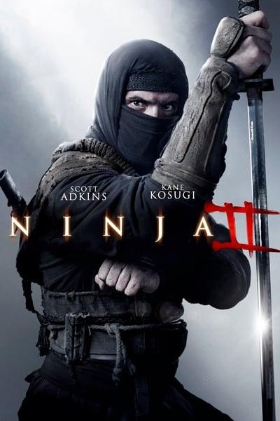 Ninja Shadow Of A Tear 2013 1080p BluRay x265-RARBG