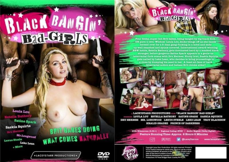 Black Bangin Bad Girls [WEB-DL 480p 1.5 Gb]