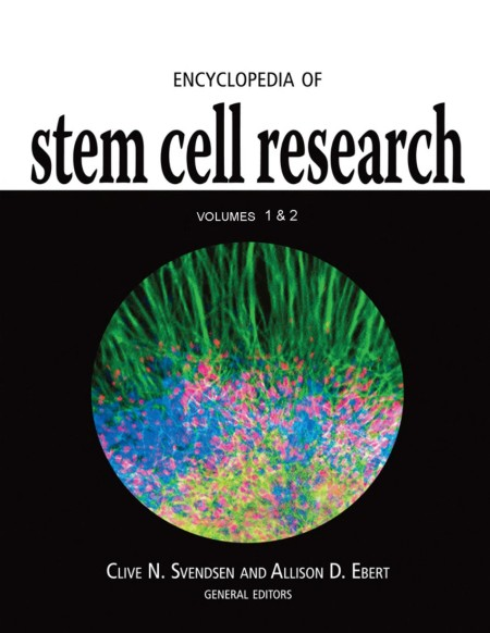 Encyclopedia Of Stem Cell Research V12 2008 P931