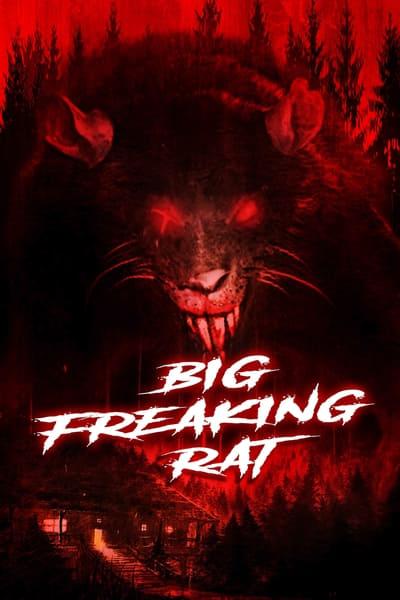 Big Freaking Rat 2020 720p BluRay 800MB x264-GalaxyRG